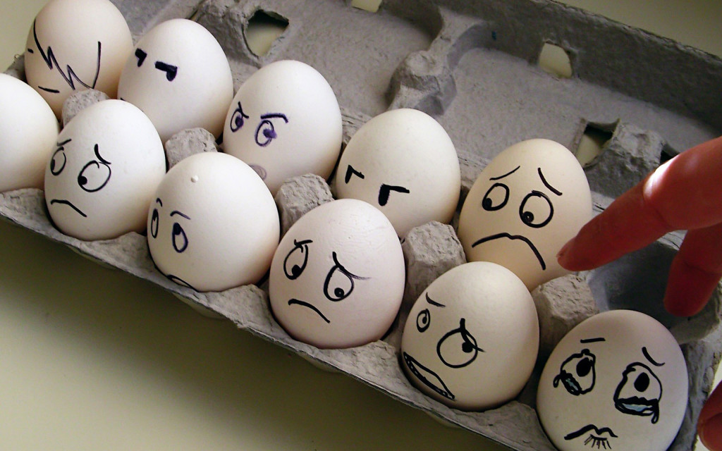 Funny eggs expression Wallpapers HD 2560x1600